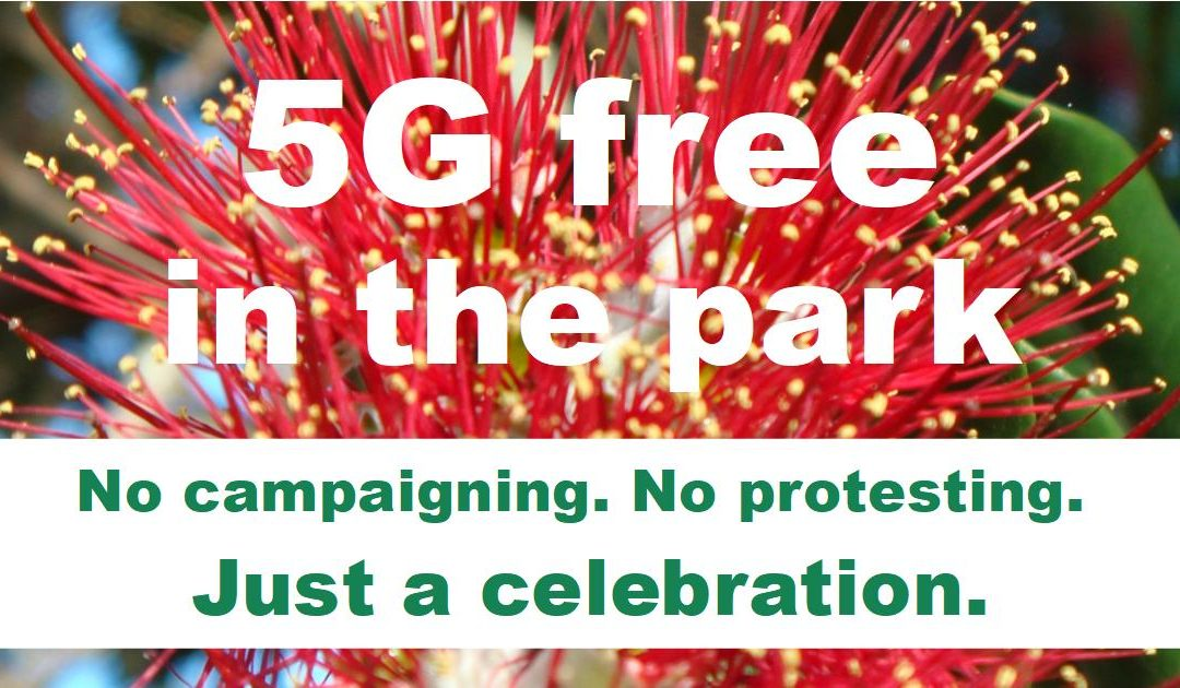5G Free in the Park